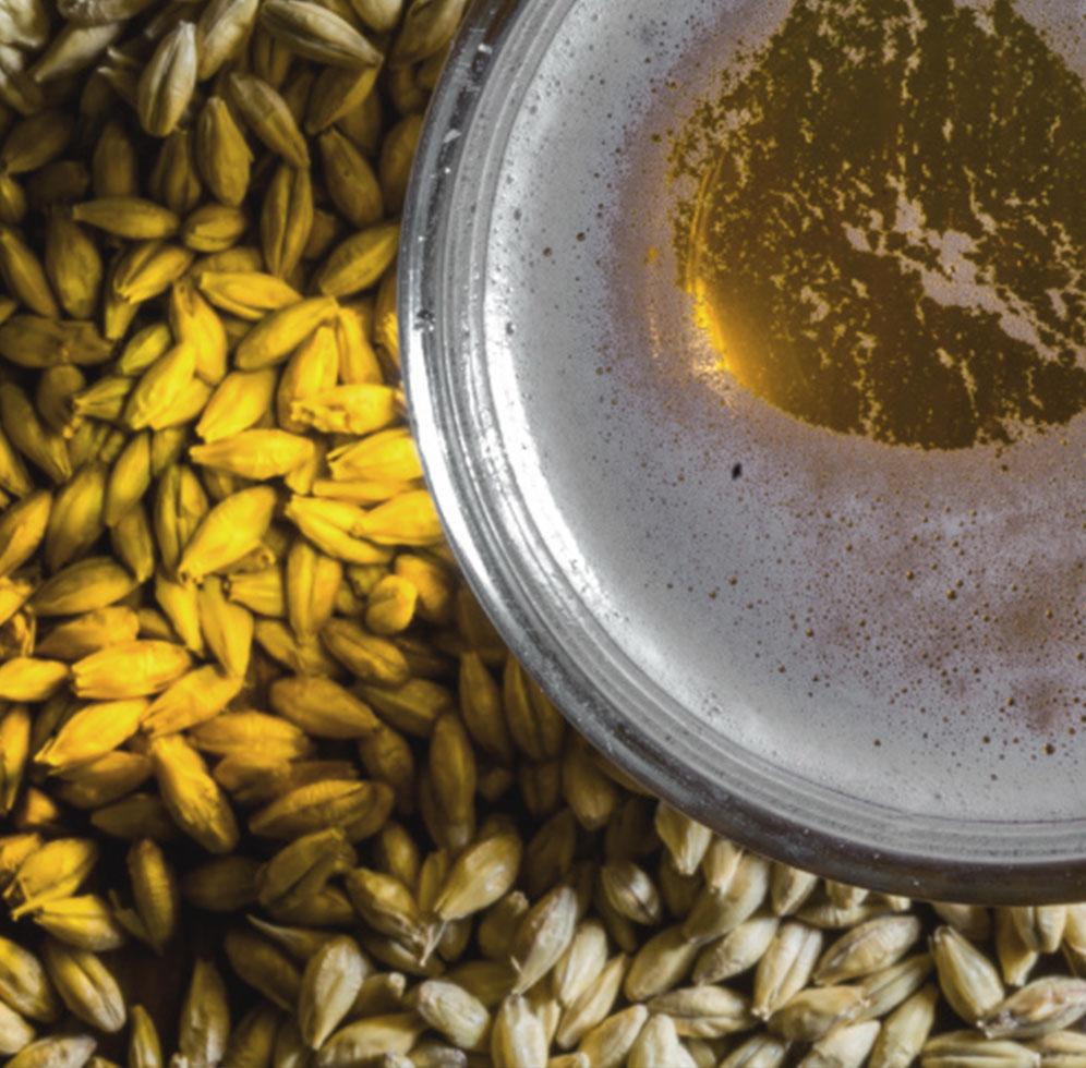 Cerveza Artesana San Xoan Producto Natural Galicia